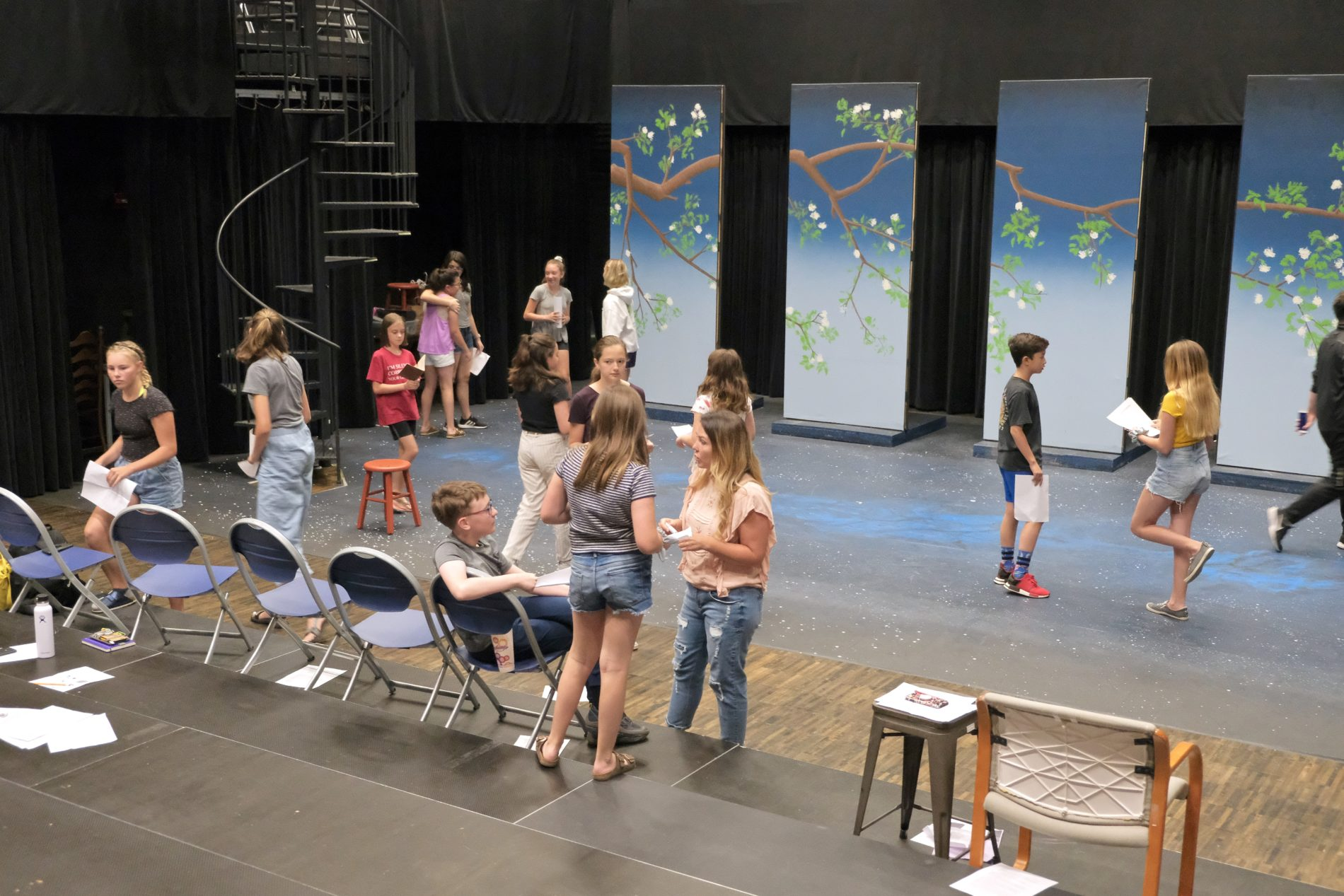 Shakespeare Acting Camp